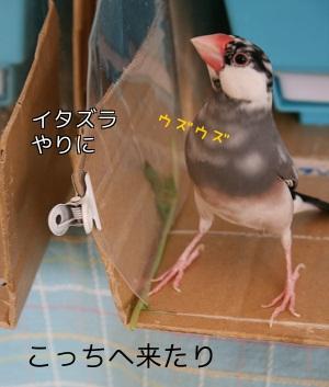 20120112_2205.jpg