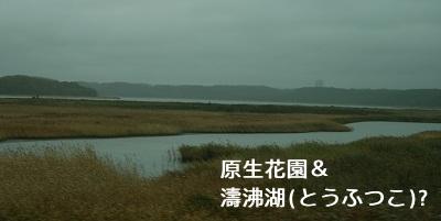 IMG_20111007_1517.jpg