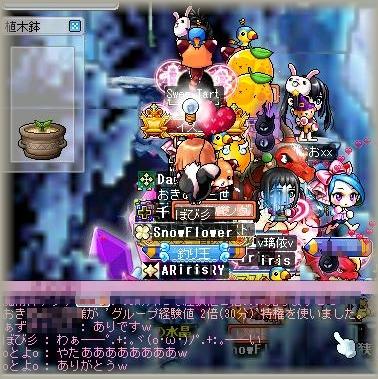 Maple_100308_221525.jpg