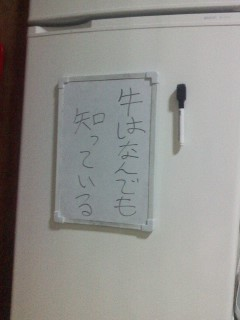 P2011_1227_013911.jpg