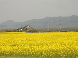 2011_0427kyou_con.jpg