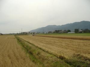 2011_0606kyou_con.jpg