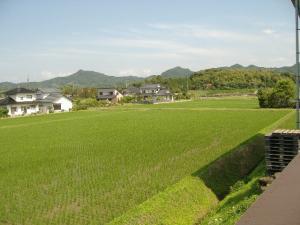 2011_0621kyou_con.jpg