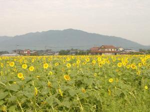 2011_0908kyou_con.jpg