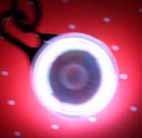 IMG_5404s_20100711182908.jpg