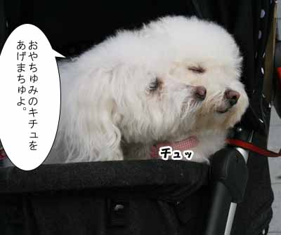 IMG_7222.jpg