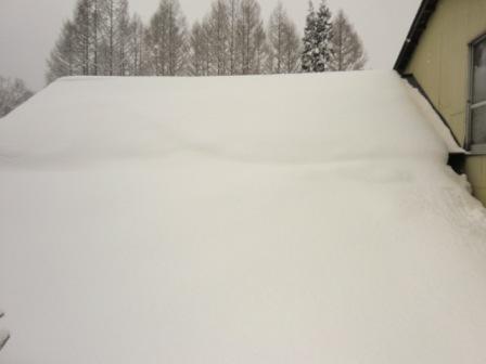 屋根雪2月3