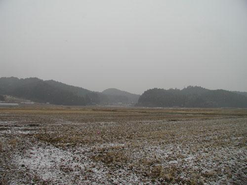 2011011501.jpg