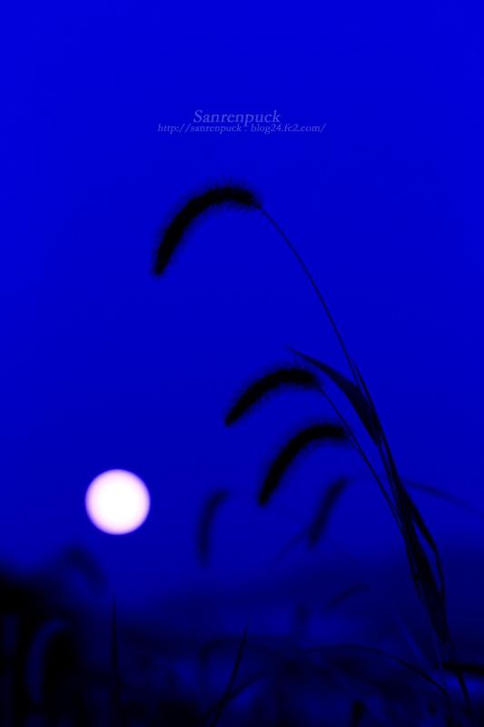 昇る満月_2