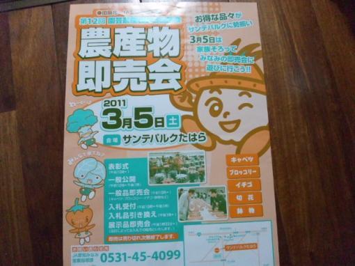 CAPXZT0D_convert_20110305194711.jpg