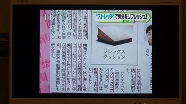 20100414ひるおびxフレックスクッション1