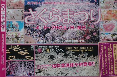 sakuramatsuri2013-1.jpg
