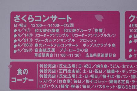 sakuramatsuri2013-2.jpg
