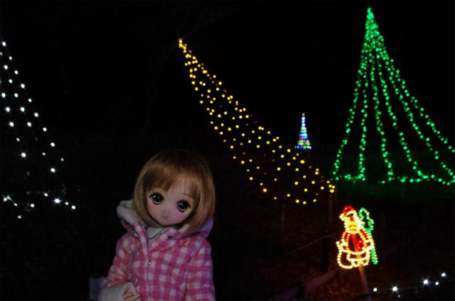 2012榛名湖イルミ36