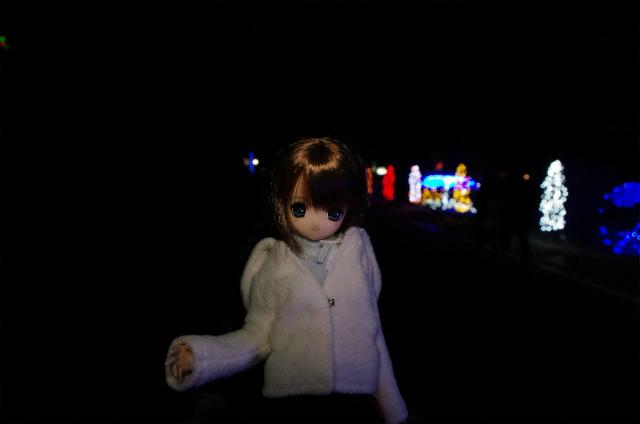 2012榛名湖イルミ40