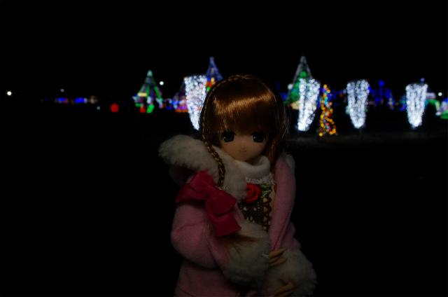 2012榛名湖イルミ56