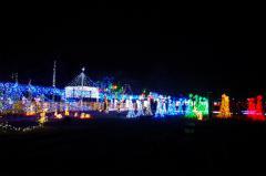 2012榛名湖イルミ58
