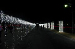 2012榛名湖イルミ65