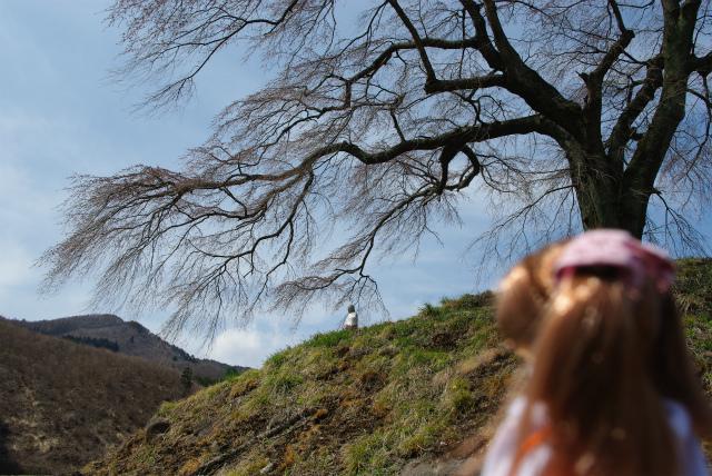 春の群馬03