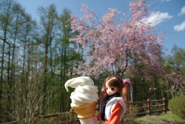 春の群馬09