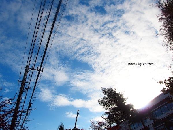 PB210050.jpg