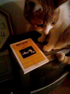 猫語の教科書1