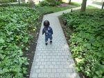 20110515散歩2