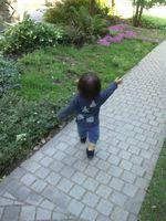 20110515散歩3