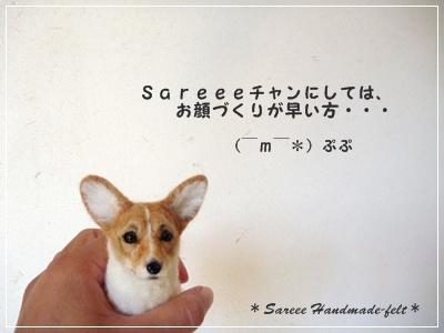 ○ P1190016