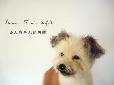 ○P1190646