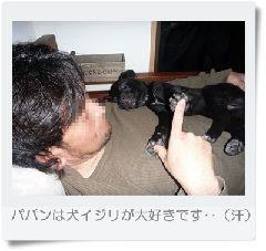 ○GRP_0586