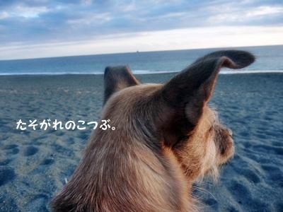 ○P1200375