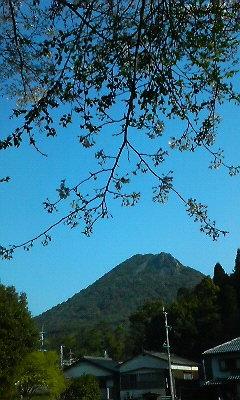 葉桜と英山(H22.4.3)