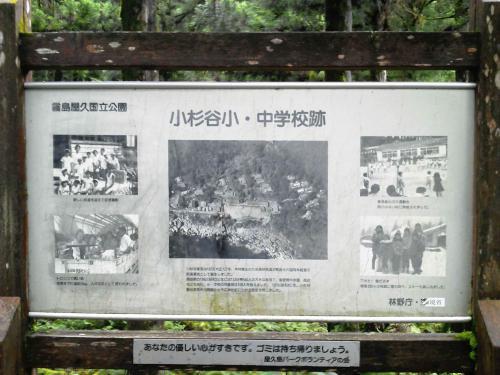 20120816_小杉谷小中学校跡-004