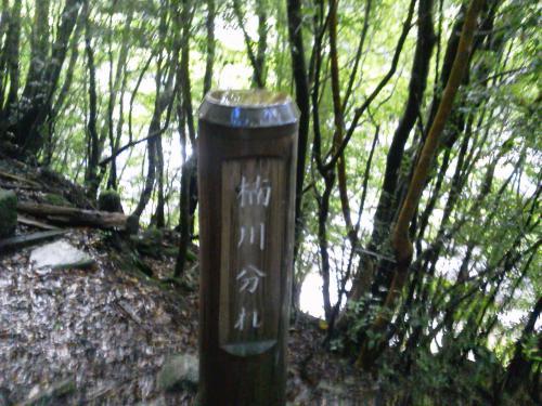 20120816_楠川分れ-001
