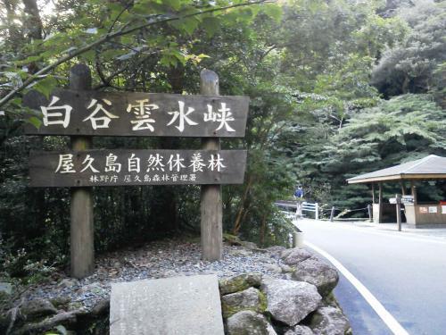 20120817_白谷雲水峡-009