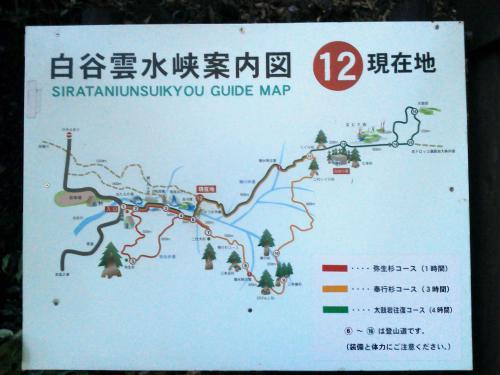 20120817_屋久島-025