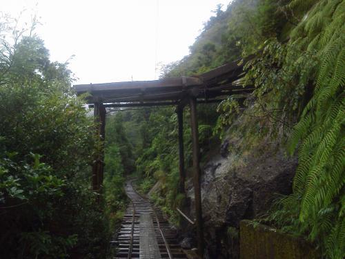 20120816_屋久島-011