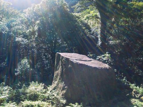 20120817_屋久島-037