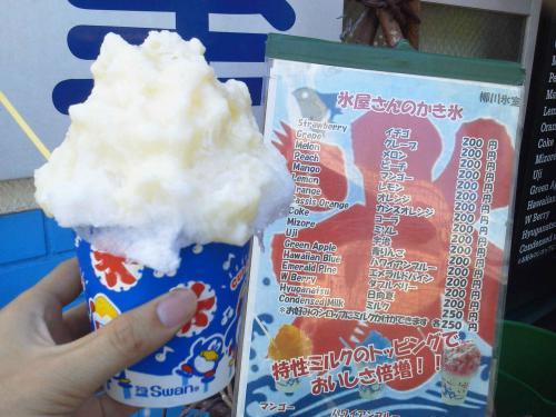 20120817_柳川氷室-004