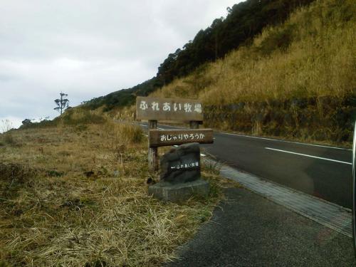 20130112_八丈富士ふれあい牧場-023