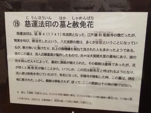 20130112_歴史民俗資料館-023