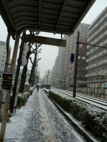 2012.02.29  雪の日 雪道