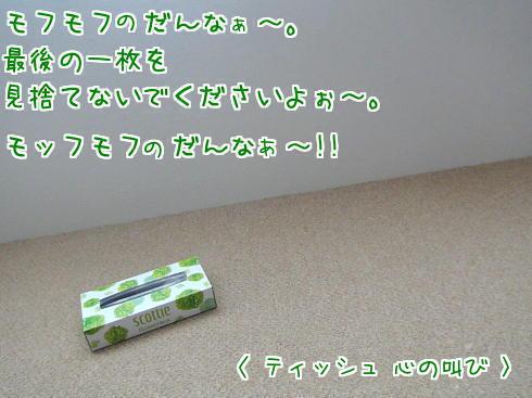 sato178-1.jpg