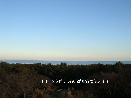 DSC07243-1.jpg