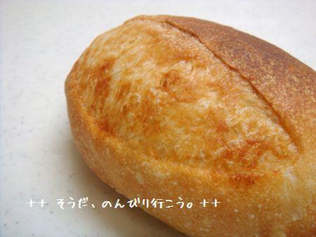 DSC07576-1.jpg