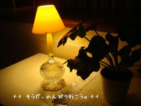 DSC07587-1.jpg