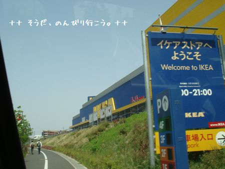 DSC08044-1.jpg