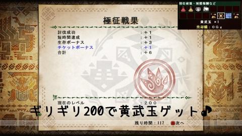 1029極征戦果