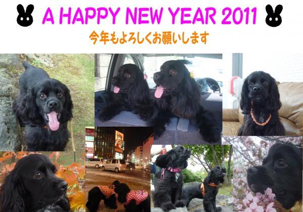 2011繝・せ繝・convert_20101230214750